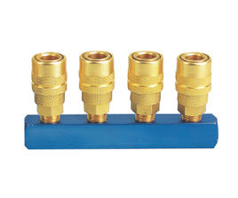 MANIFOLD WITH USA TYPE QUICK COUPLER